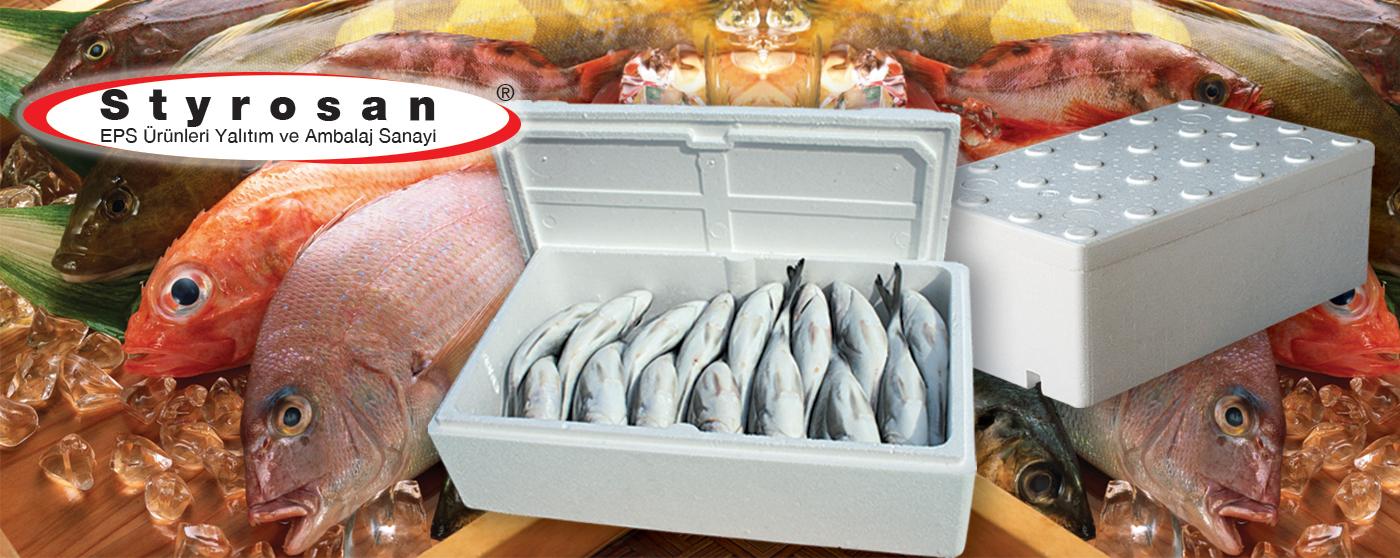 balık kutusu copy  1400x558